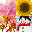 七色の春夏秋冬